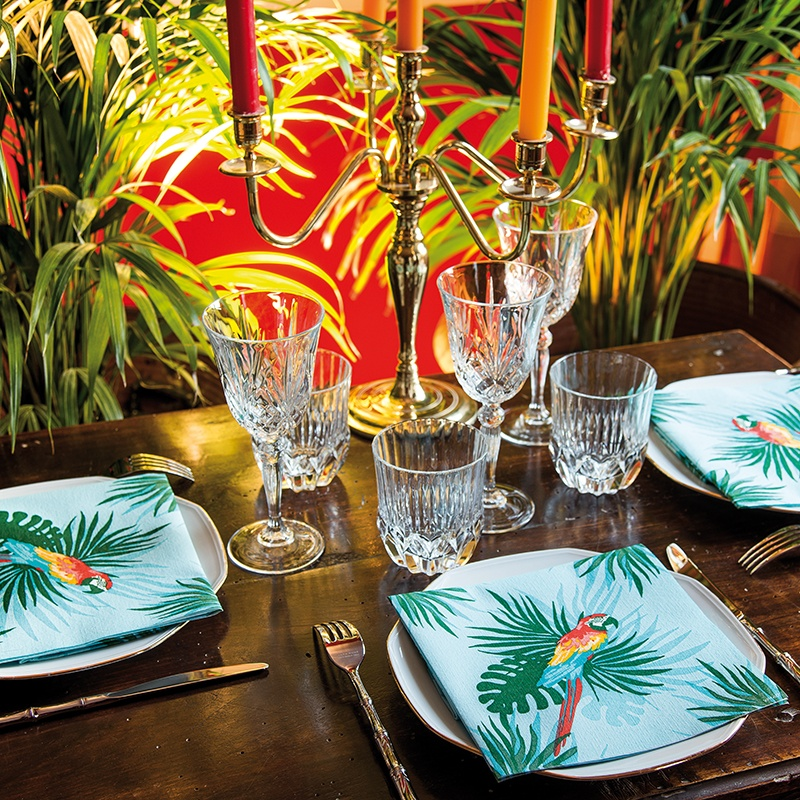 perroquet-ambiance_409068593